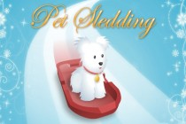 Pet Sledding - Zrzut ekranu