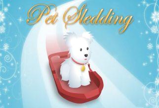 Graj w Pet Sledding