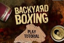 Backyard Boxing - Zrzut ekranu