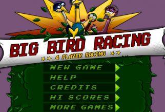 Graj w Big Birds Racing