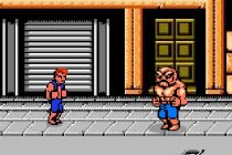 Double Dragon: Flash Fighters - Zrzut ekranu