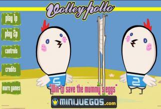 Graj w Volley Pollo