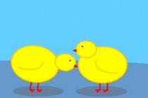 Chick Adee - Zrzut ekranu