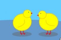 Chick Adee
