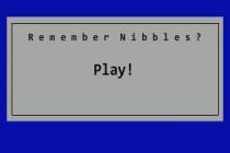Remember Nibbles? - Zrzut ekranu