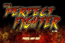The Perfect Fighter - Zrzut ekranu