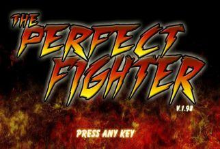 Graj w The Perfect Fighter
