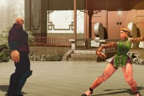The Perfect Fighter - Zrzut ekranu