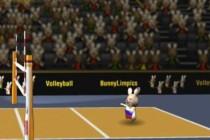 BunnyLimpics VolleyBall - Zrzut ekranu