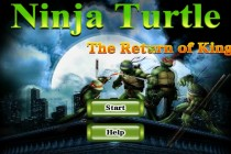 Ninja Turtle The Return of King - Zrzut ekranu