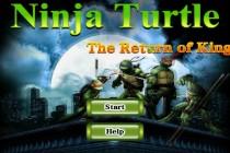 Ninja Turtle The Return of King - Zrzut ekranu
