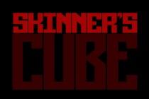 Skinner's Cube - Zrzut ekranu