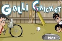 Galli Cricket - Zrzut ekranu