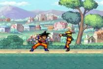 Animation Fighting