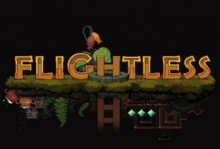 Graj w Flightless
